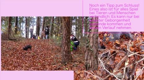 Film_land-schaften_4